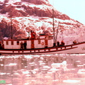 Nunatak Glacier Bay ca 1954--POST